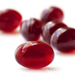 krill oil pills
